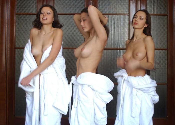 Предлагаем вашему вниманию эротическую фото галерею под названием Эро-трио